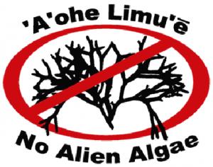 A'ohe Limu'e No Alien Algae Logo