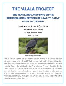 Kona Library: One Year Later: An Update on the Reintroduction Efforts of Hawaiʻiʻs Native Crow to the Wild post thumbnail