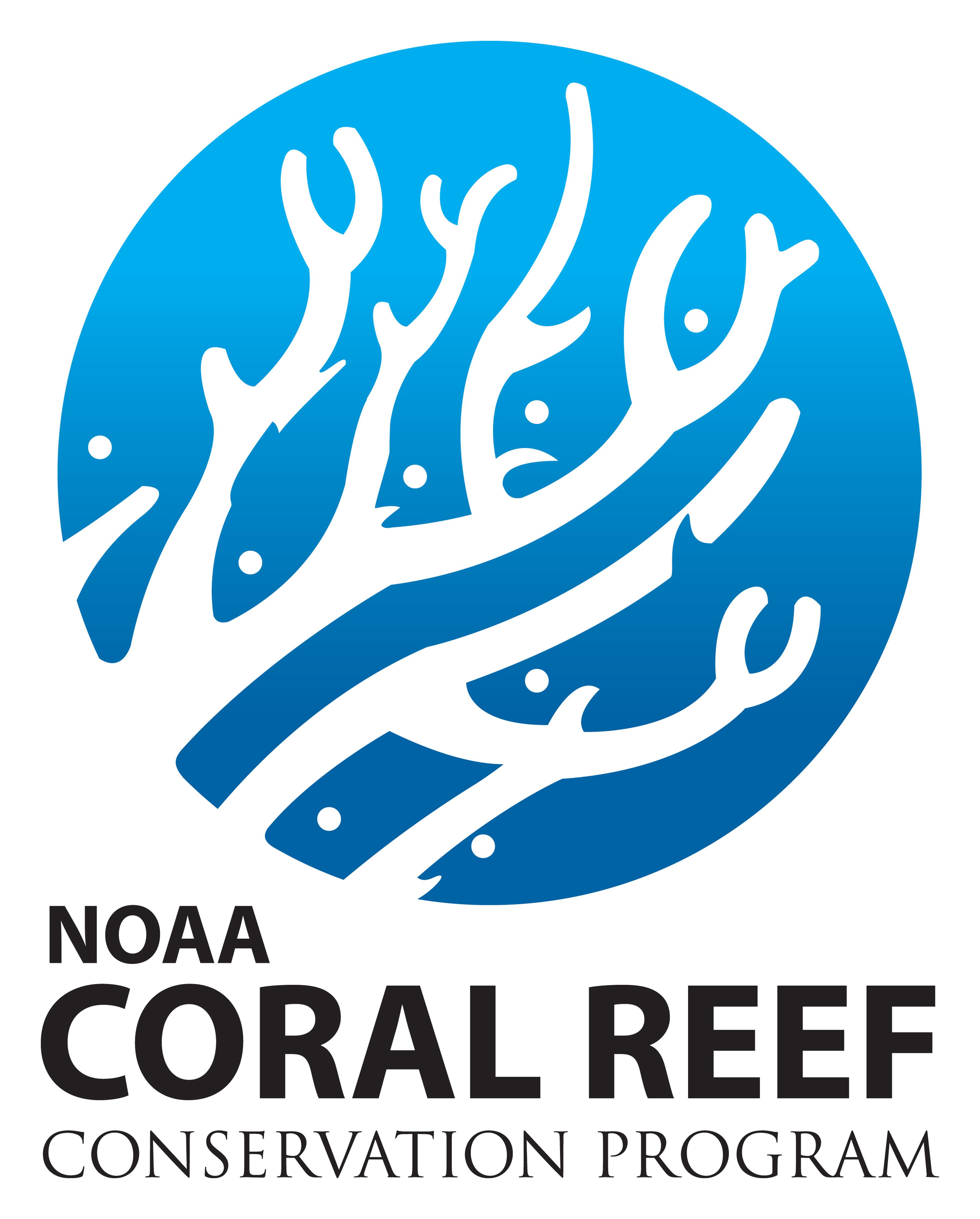 coral reefs west maui