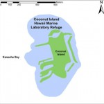 Map of Coconut Island
