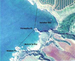Aerial view of Honolua-Mokule'ia bay