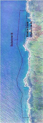 Aerial view of Lapahaki