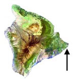 Arrow pointing to Waiopae Tidepools on the East side of Hawaii island