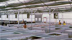 Photo of interior of the thermocontrolled facility.