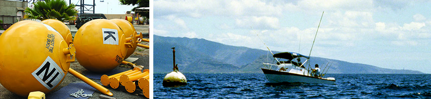 fish aggregating devices and fad fishing
