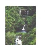 Mauka Brochure