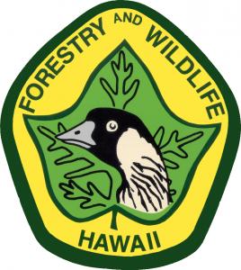 dofaw logo