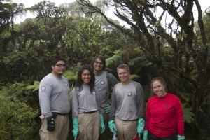 NCCC at Ka'ala Natural Area Reserve with Division of Forestry and Wildlife