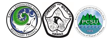 Kauai-Endangered-Seabird-Recovery-Project