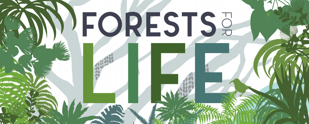An graphic of a Hawaiian forest with a logo reading Forests for Life