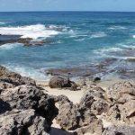 Kaena Point seashore
