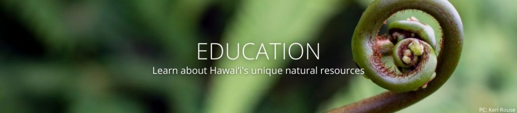 An image of an unfurling fern frond with the words Education: Learn about Hawaiʻi's unique natural resources