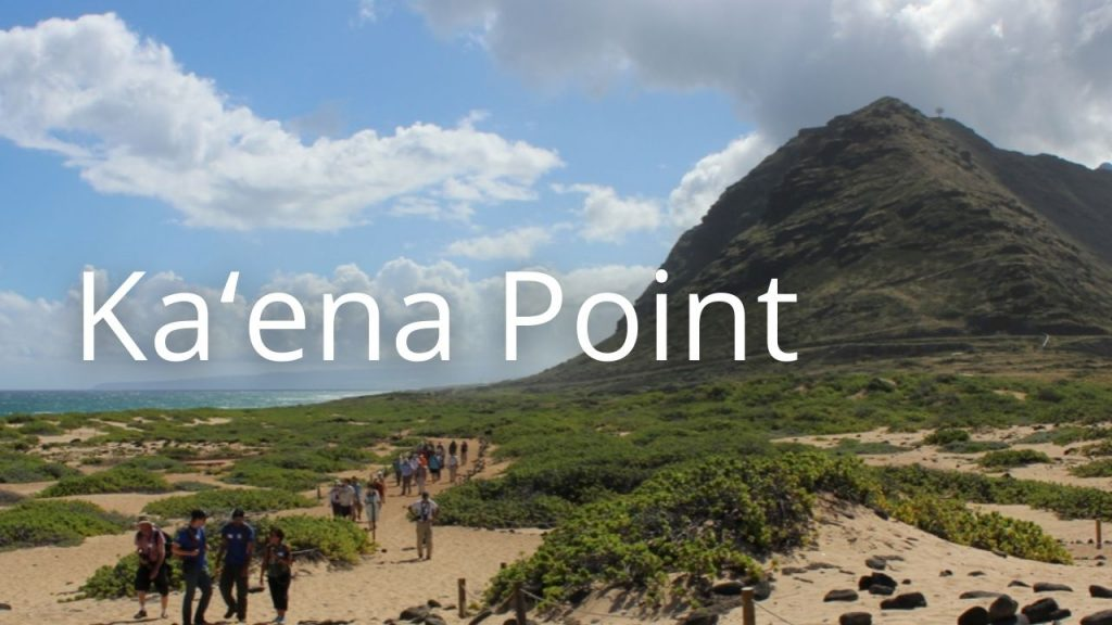 An image of Kaena point linking to a virtual tour