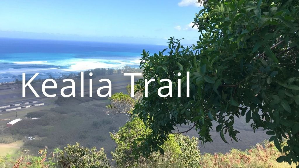 An image of the north shore from Kealia trail on Oahu