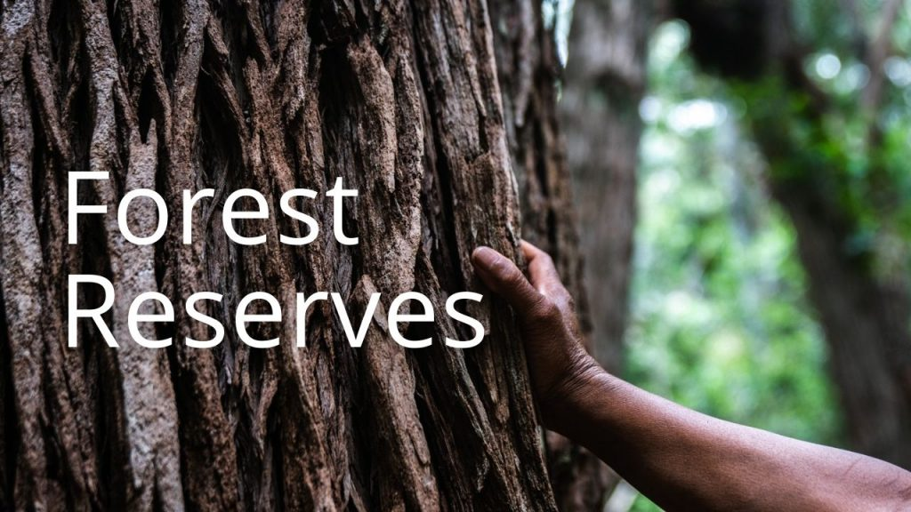 An image of a hand on a tree linking to a page about Forest Reserves
