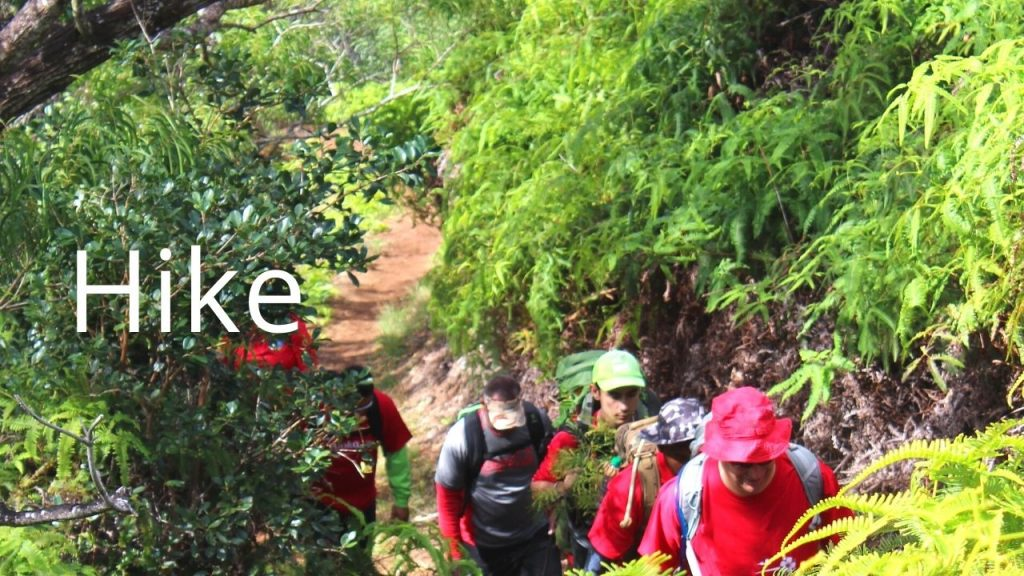 An image of people hiking linking to a page about hiking