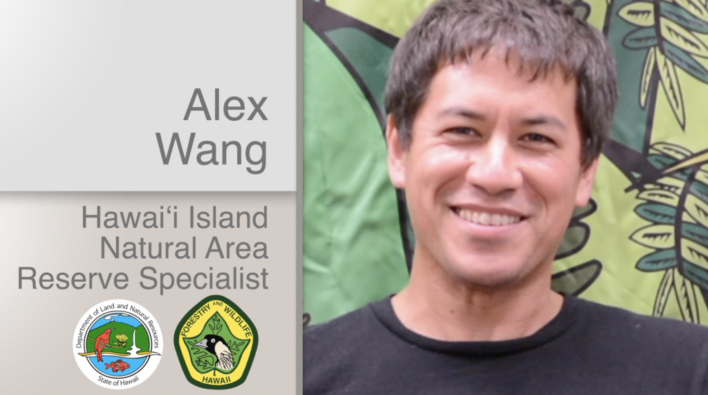 A thumbnail for the video Alex Wang Hawaiʻi Island Natural Area Reserve Specialist