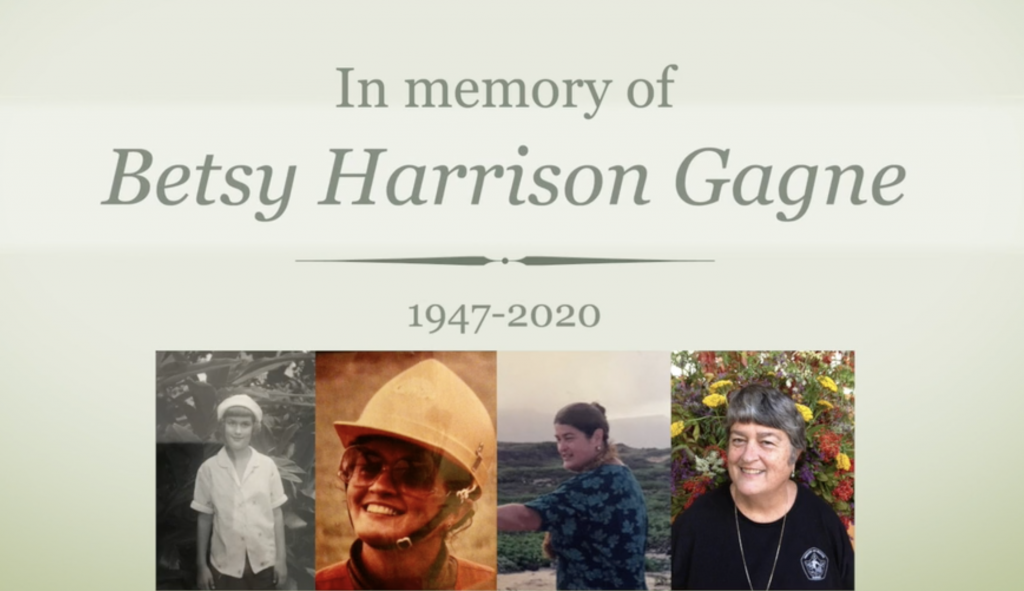 A thumbnail for the video In Memory of Betsy Harrison Gagne