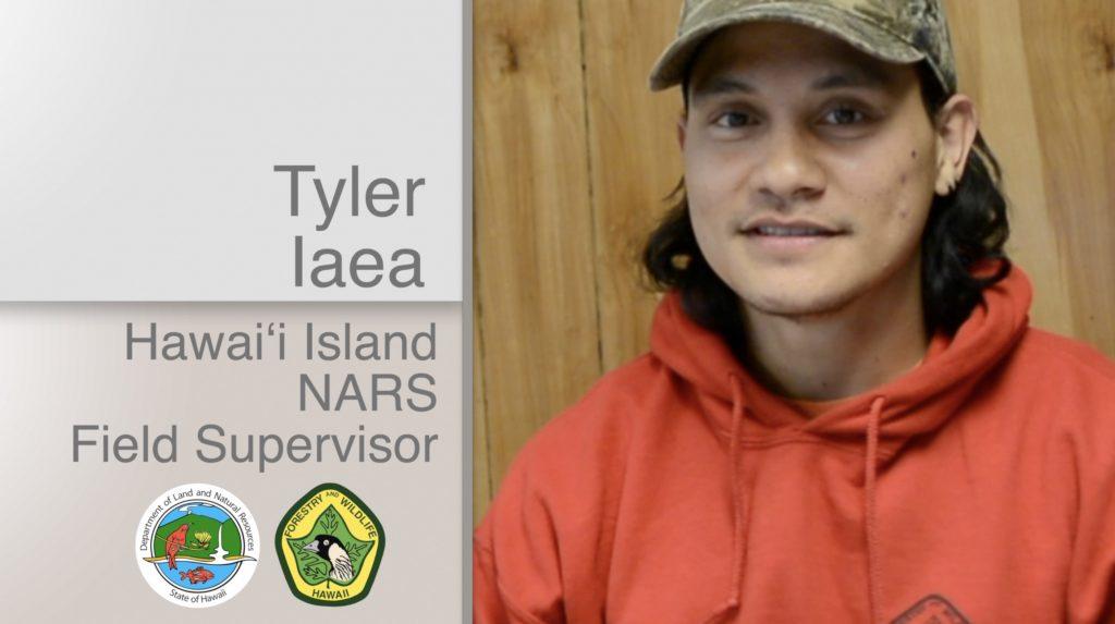 A thumbnail linking to a video on Tyler Iaea Hawaiʻi Island NARS Field Supervisor