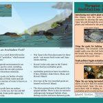 Anchialine pool brochure (2)
