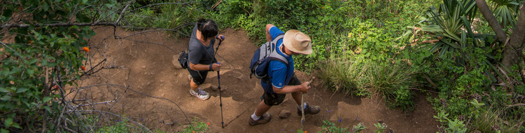 Hawaii hikers