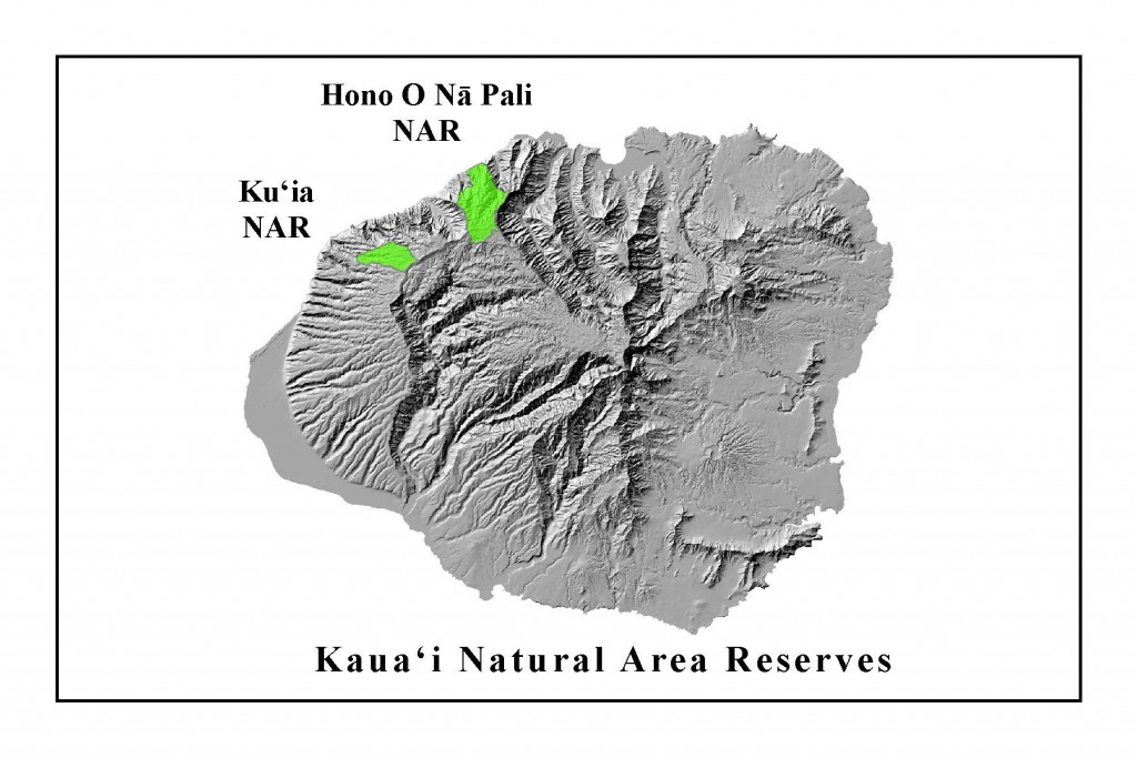 KauaiNAR_website