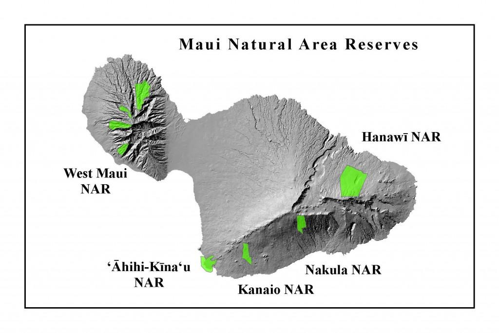MauiNAR_website