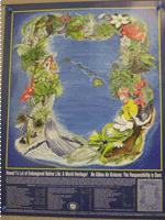lei-poster-thumbnail