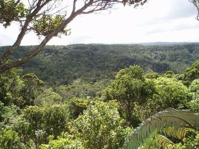 vista of the Alakai including the Hono o Na Pali NAR extension