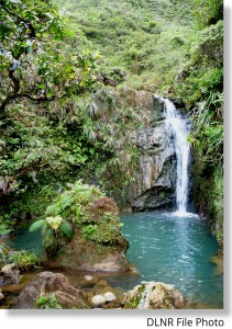 Kaluanui_Waterfall 1_Emma Yuen