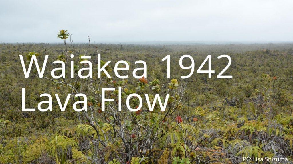 An image of Waiākea 1942 Lava Flow NAR