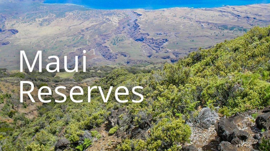 An image of Nakula NAR linking to Maui reserves