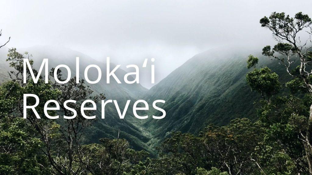 An image of Waikolu Valley linking to Molokaʻi reserves