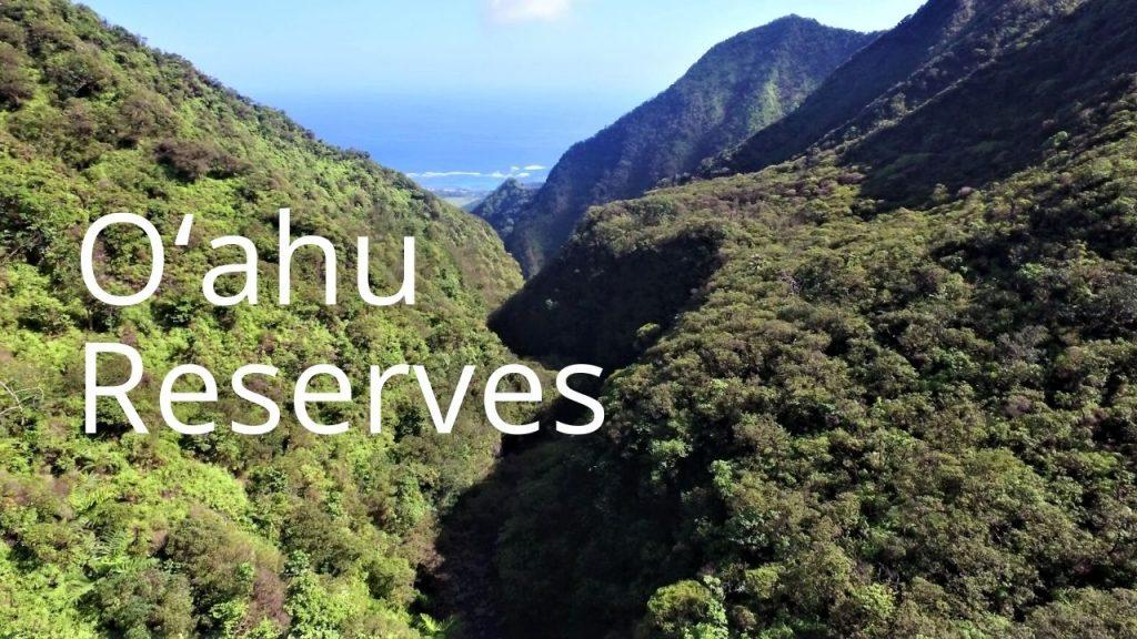 An image of Kaluanui NAR linking to Oʻahu  reserves