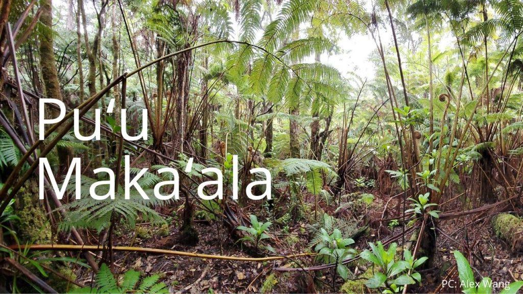 An image of Puʻu Makaʻala NAR