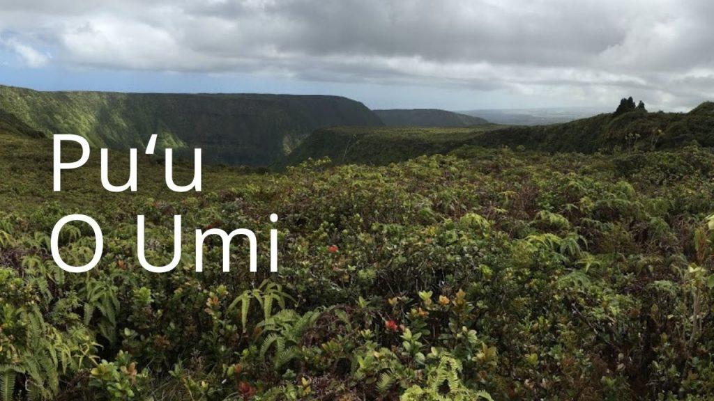 An image of Puʻu O Umi NAR