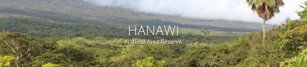 Landscape of Hanawi