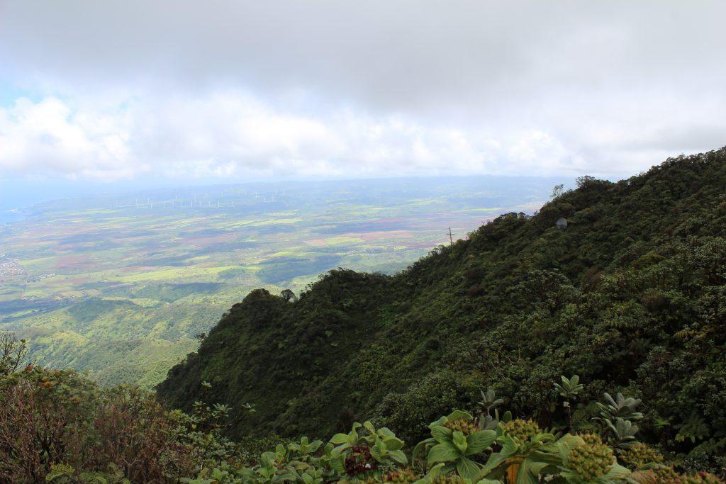 Mount Kaala