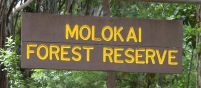 molokai1