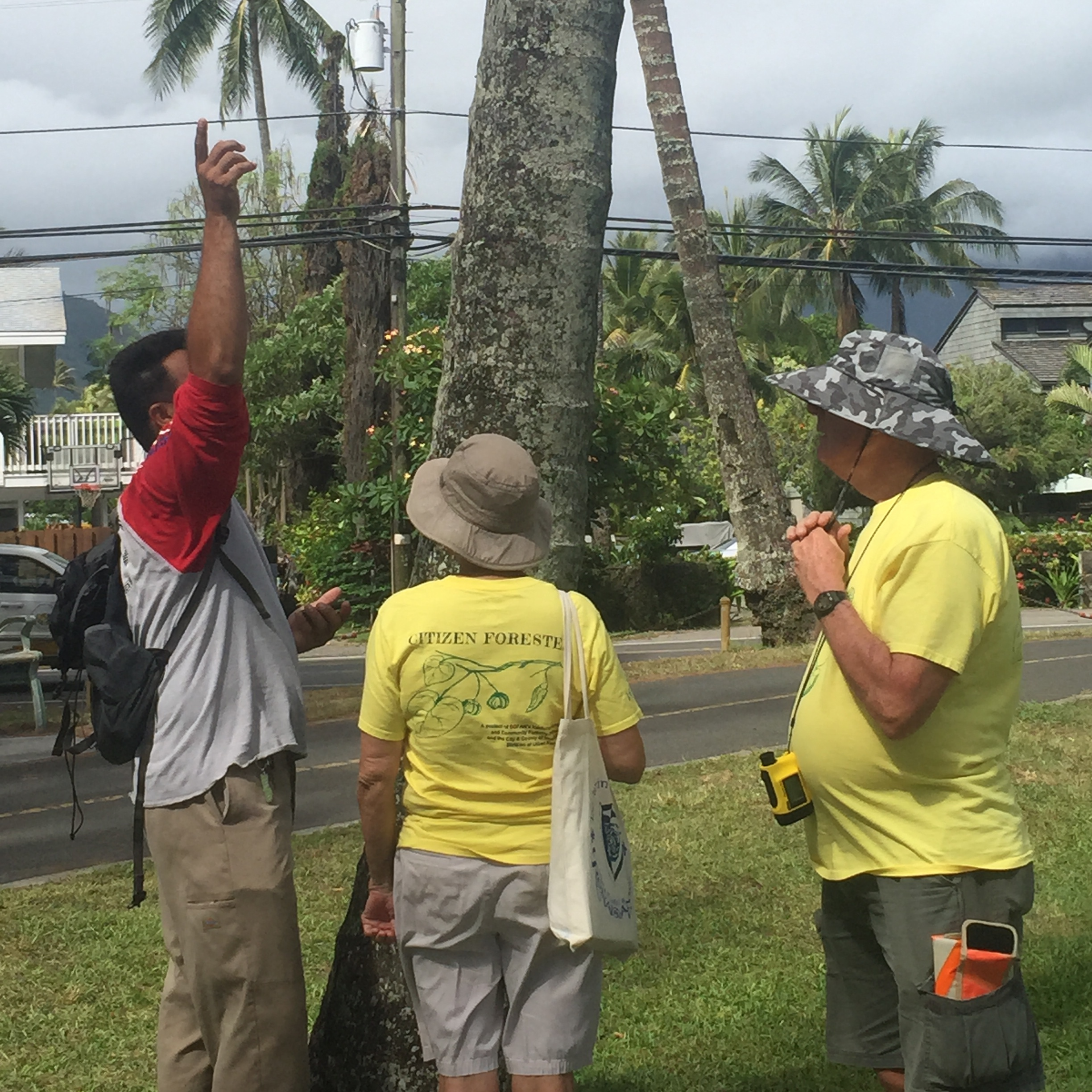 Citizen Foresters in Kailua