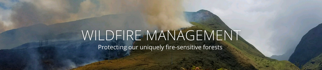 """An image of a wildfire with the text """"Wildfire Management: Protecting our uniquely fire-sensitive forests"""""""