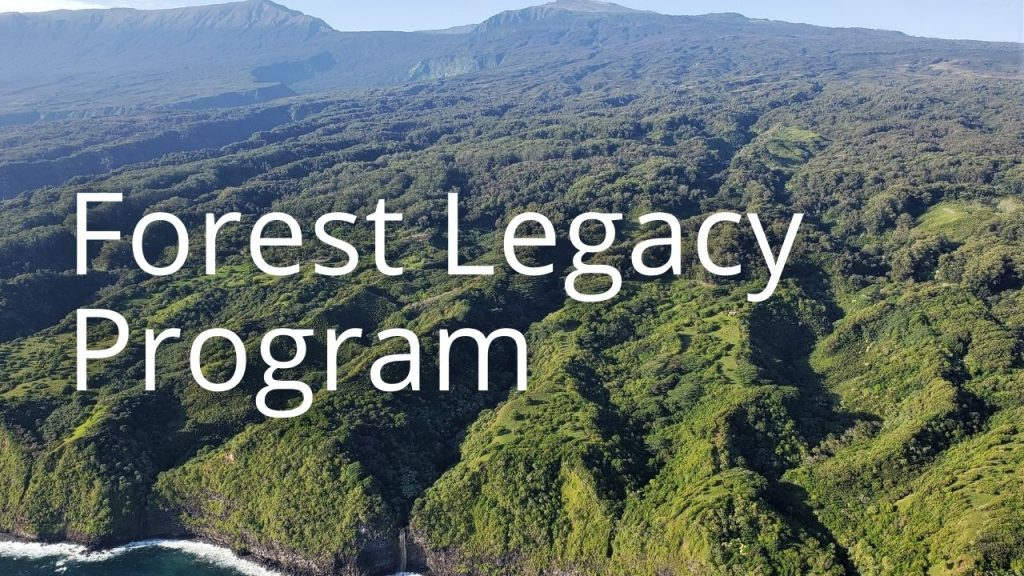 An image of forested valleys linking to info on Forest Legacy Program information