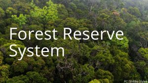 An image and link related to Forest  Reserve System