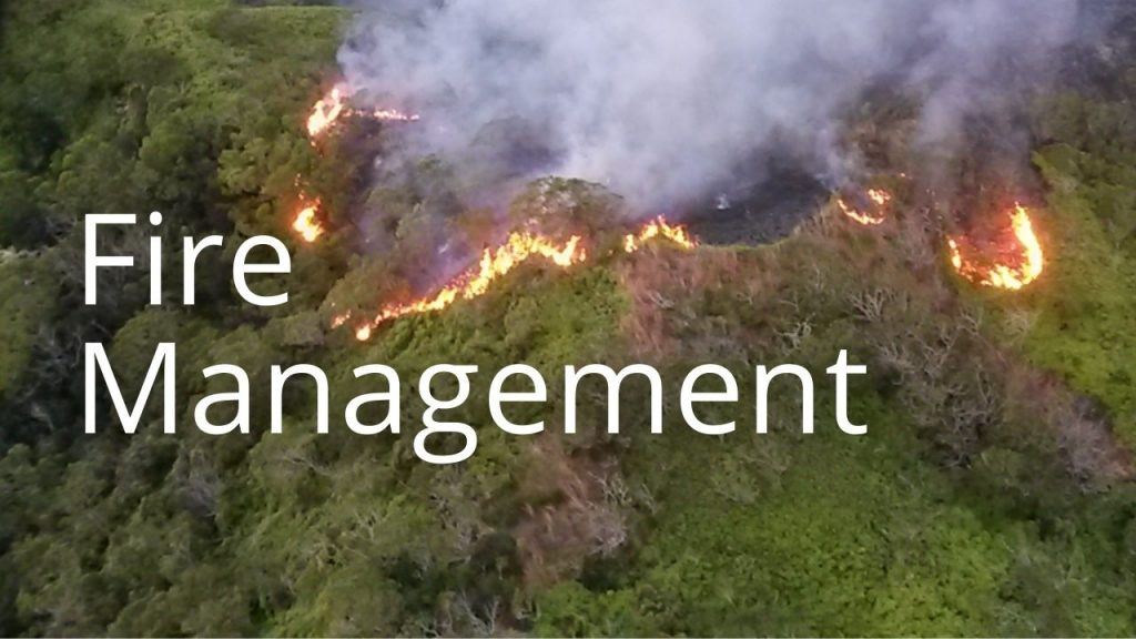 An image and button related to Fire Management