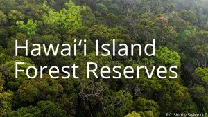 An image and button related to Hawaii Island Forest Reserves