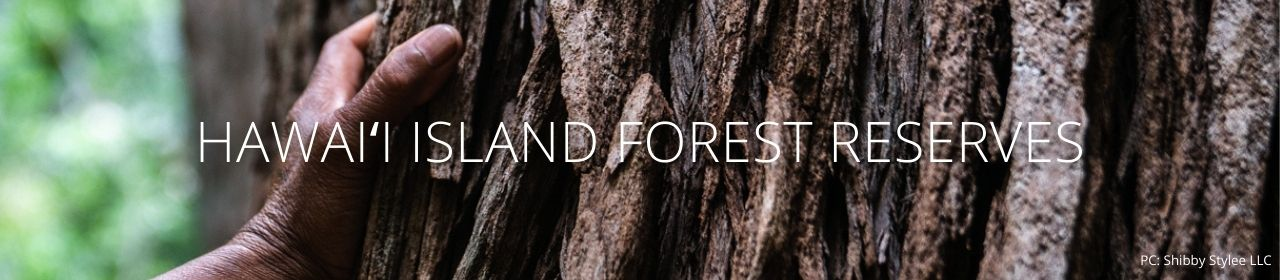 An image of a hand on a tree with the words Hawaiʻi Island Forest Reserves