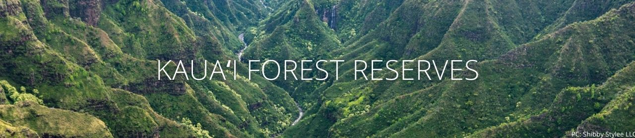 An image of a forested valley with the words KauaivForest Reserves
