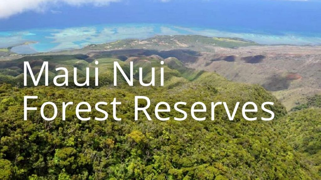 An image and button related to Maui Nui Forest Reserves