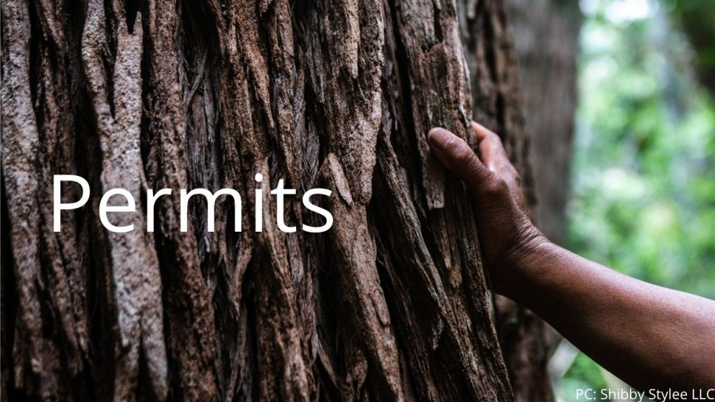 An image of a person touching a tree linking to the permits page