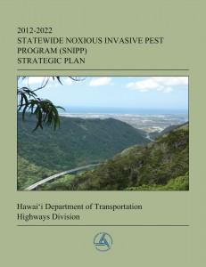 SNIPP strategic plan doc cover